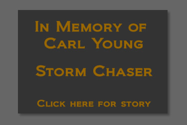 Memorial to Carl Young